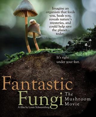 فيلم Fantastic Fungi 2019 مترجم