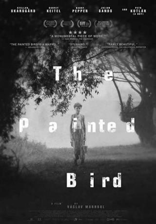 فيلم The Painted Bird 2019 مترجم