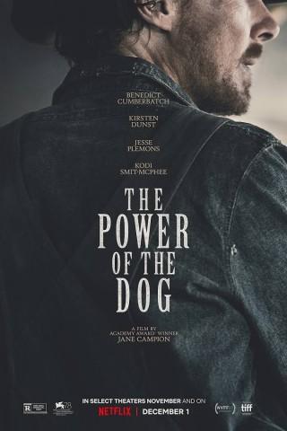 فيلم The Power of the Dog 2021 مترجم