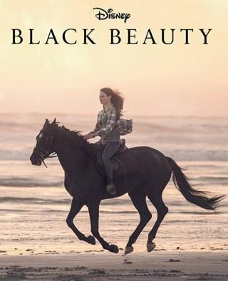 فيلم Black Beauty 2020 مترجم