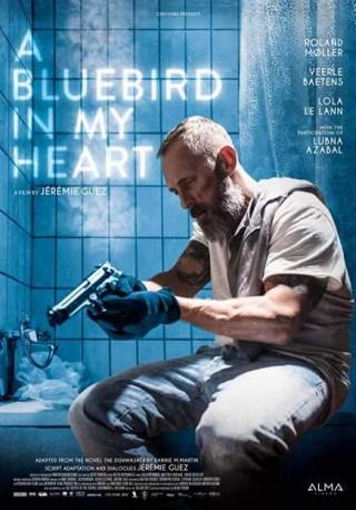 فيلم A Bluebird in My Heart 2018 مترجم