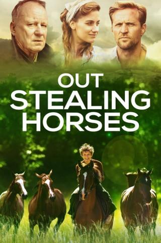 فيلم Out Stealing Horses 2019 مترجم
